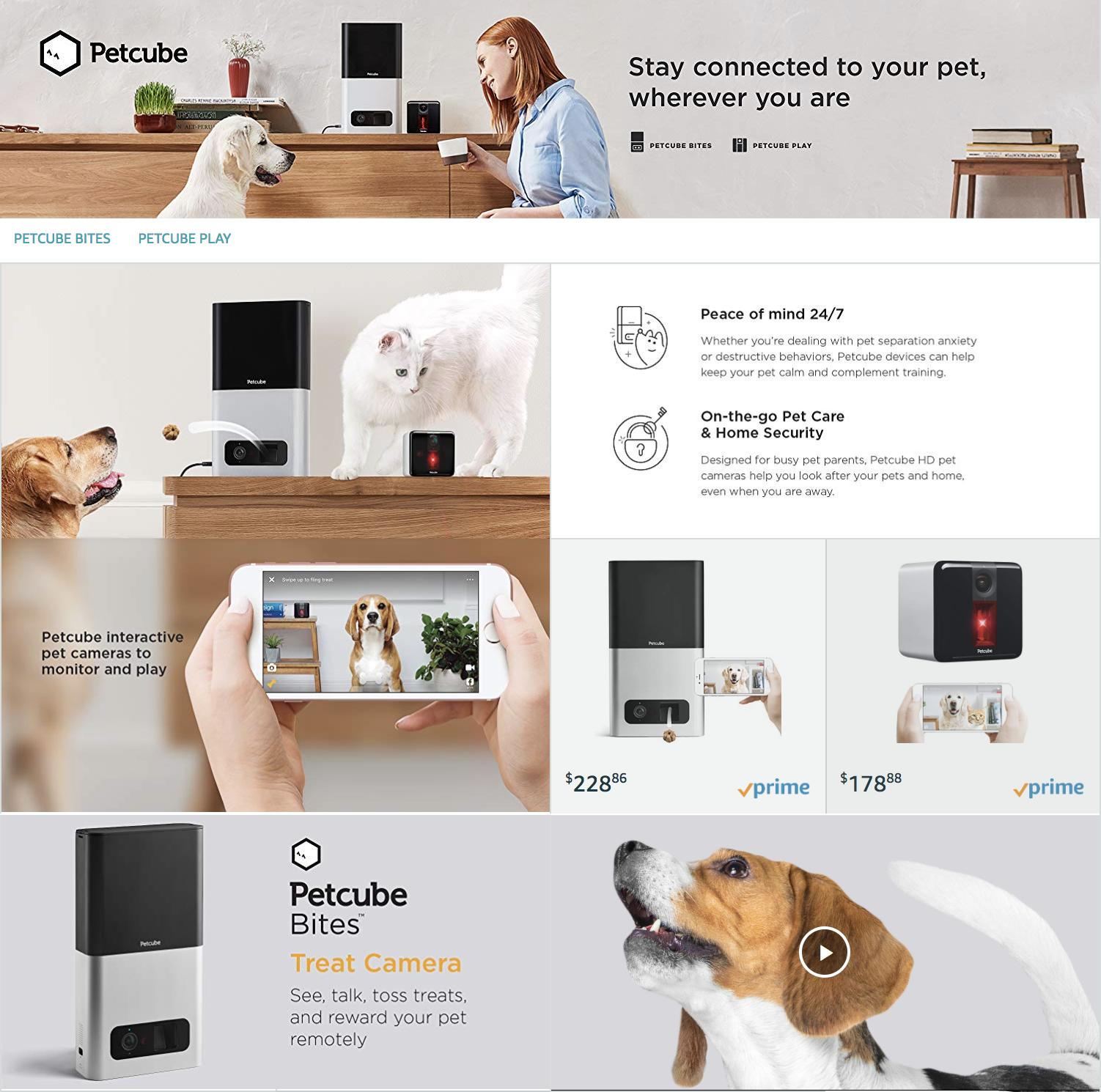 Petcube Amazon Store