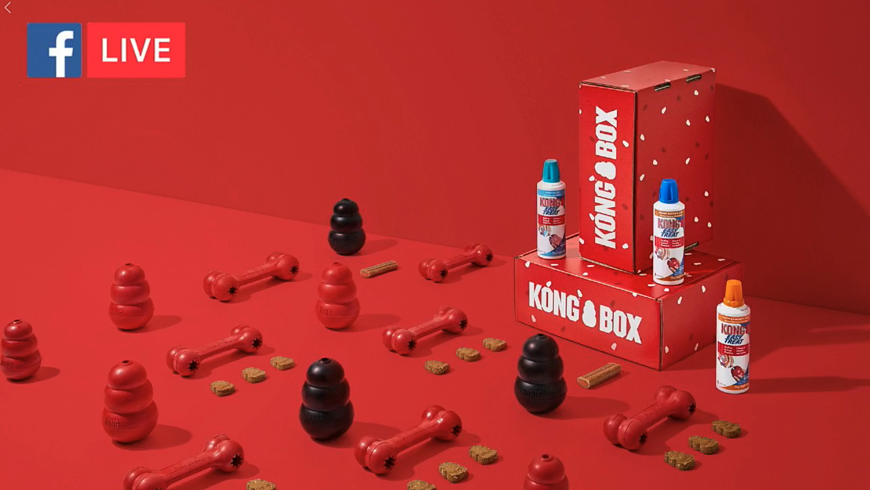 Pattern's digital marketing expertise helped KONG Box have a successful Facebook Live event that successfully drove engagement and traffic to their new product. Watch the Live video here!